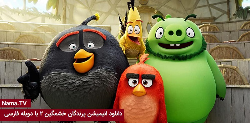 دانلود انیمیشن پرندگان خشمگین ۲با دوبله فارسی
